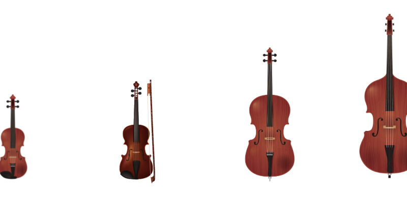 Violin Viola Cello Bass: What Separates These 4 Instruments?
